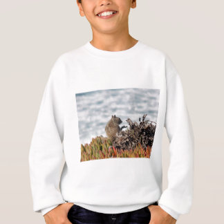 Little squirrel sweatshirt