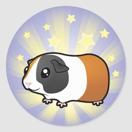 Little Star Guinea Pig (smooth hair) Stickers