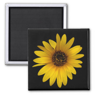 Little Sunflower I Magnet