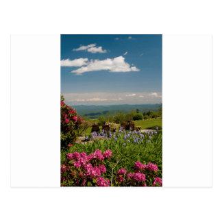 little switzerland postcard