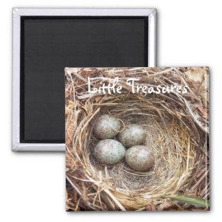 Little Treasures Bird Nest Eggs Photo Square Magnet