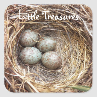 Little Treasures Bird Nest Eggs Photo Square Sticker