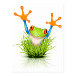 Little Tree Frog in the grass Post Cards