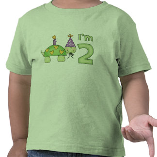 Little Turtle 2nd Birthday T Shirts