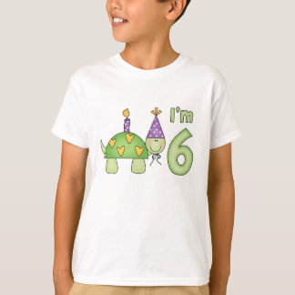 Little Turtle 6th Birthday T-Shirt