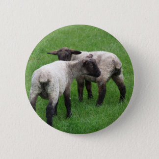 Little Twin Lambs 6 Cm Round Badge