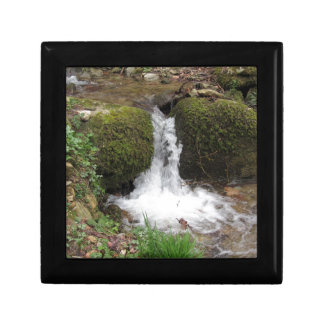 Little waterfall by mossy rocks in the forest gift box