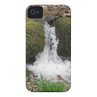 Little waterfall by mossy rocks in the forest iPhone 4 case