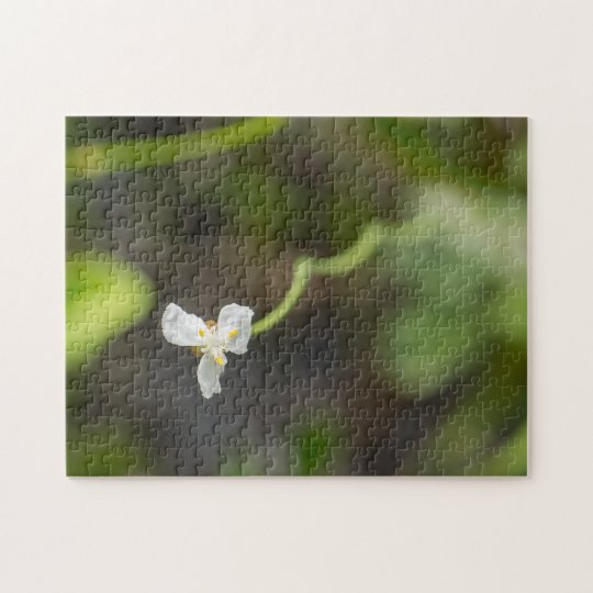 Little White Flower with Wavy Stem Jigsaw Puzzle
