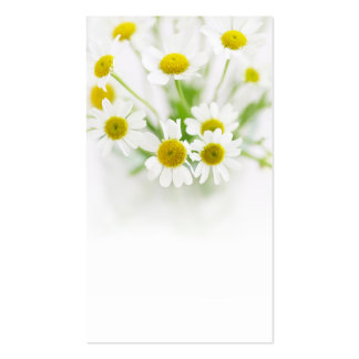 Little white flowers pack of standard business cards