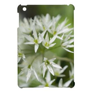 Little White Star Flowers Photograph iPad Mini Cases