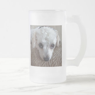 Little White Teacup Poodle Dog Frosted Glass Beer Mug