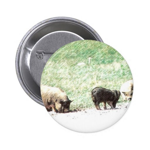 Little Wild Pigs Sketch Pinback Buttons