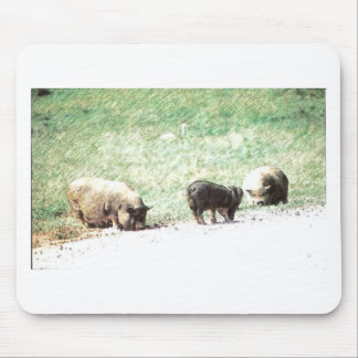 Little Wild Pigs Sketch Mouse Pad
