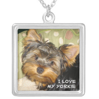 Little Yorkie Silver Plated Necklace