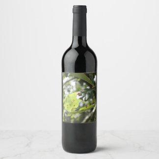 Litttle Lady Bug Wine Label
