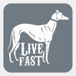 Live Fast Square Sticker