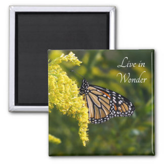 Live in Wonder Monarch Butterfly Magnet