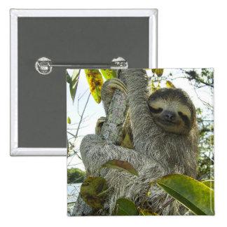 Live Life Like a Sloth 15 Cm Square Badge