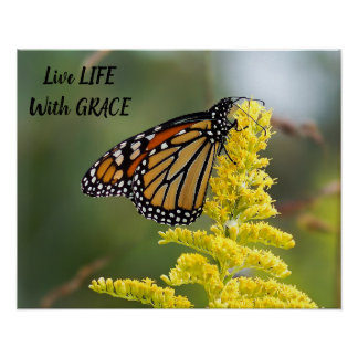 Live Life With Grace Monarch Butterfly Poster