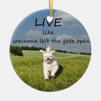 """""""Live Like Someone Left the Gate Open"""" Ornament"""