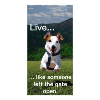 """""""Live Like Someone Left the Gate Open"""" Photo Card"""