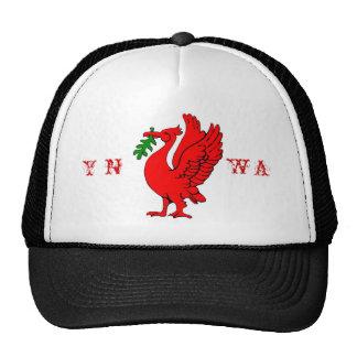 Liver bird cap