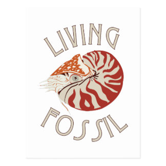 Living Fossil Postcard