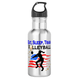 LIVING MY VOLLEYBALL DREAM DESIGN 532 ML WATER BOTTLE