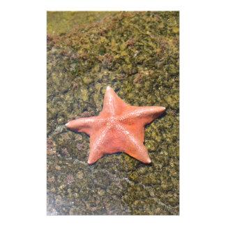 Living starfish.JPG Customised Stationery
