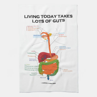 Living Today Takes Lots Of Guts Digestive System Tea Towel