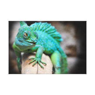 lizard canvas