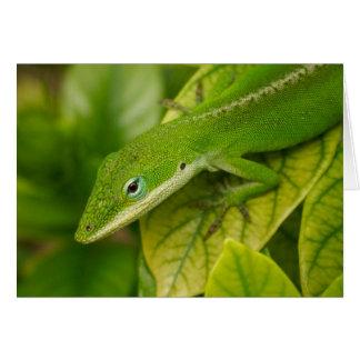 Lizard GC 001 Card