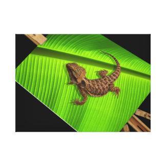 Lizard on Canvas