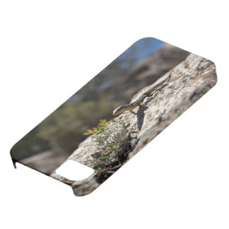 Lizard Themed, A Curious Speckled Lizard Investiga iPhone 5 Covers