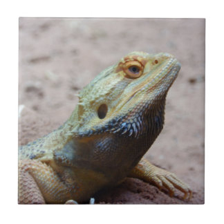 Lizard Tile