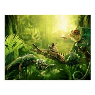 Lizards Frogs Jungle Reptiles Landscape Postcard