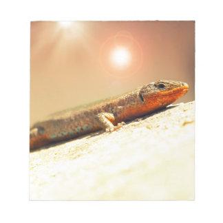 Lizart heat notepad