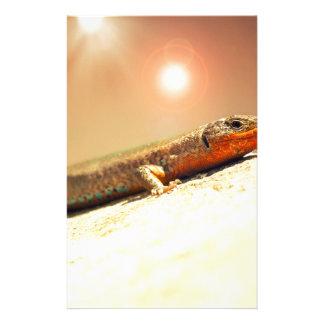 Lizart heat stationery
