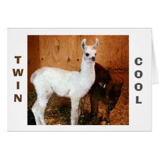 "LLAMA AND CALF SAY ""TWIN"" YOU LOOK FABULOUS CARD"