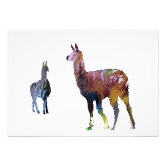 Llama art photo print