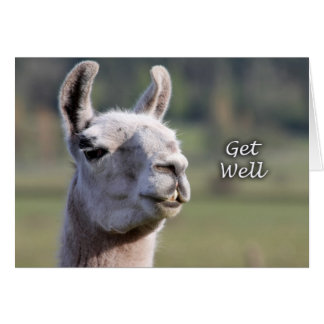 Llama Get Well |Get Well Soon Llama Card