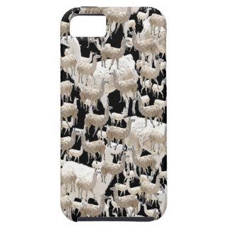 Llama Llama and more Llamas iPhone 5 Case