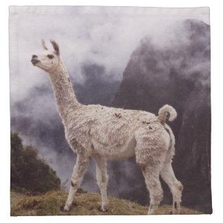 Llama Machu Picchu, Peru Printed Napkin