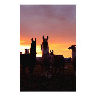 Llama Sunrise Personalized Stationery