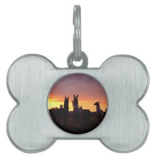 Llama Sunrise Pet Tag