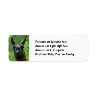 Llama with Attitude - Sticking out Tongue Photo Return Address Label
