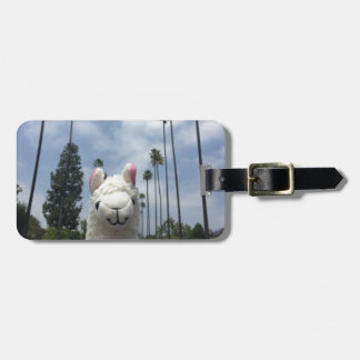 Llama With No Drama LA Luggage Tag