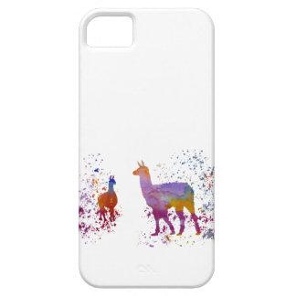 Llamas iPhone 5 Covers