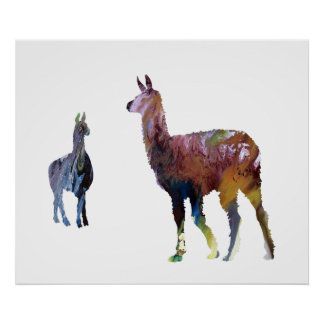 Llamas Poster